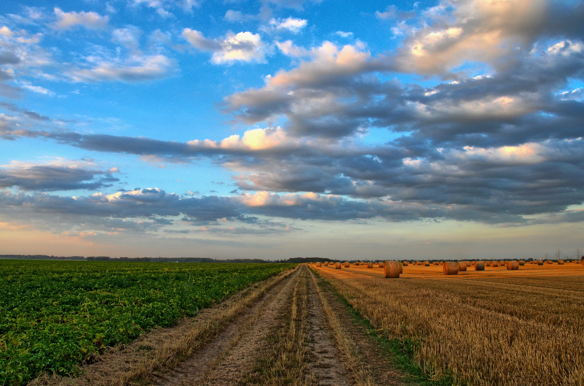農業農村の補助金
